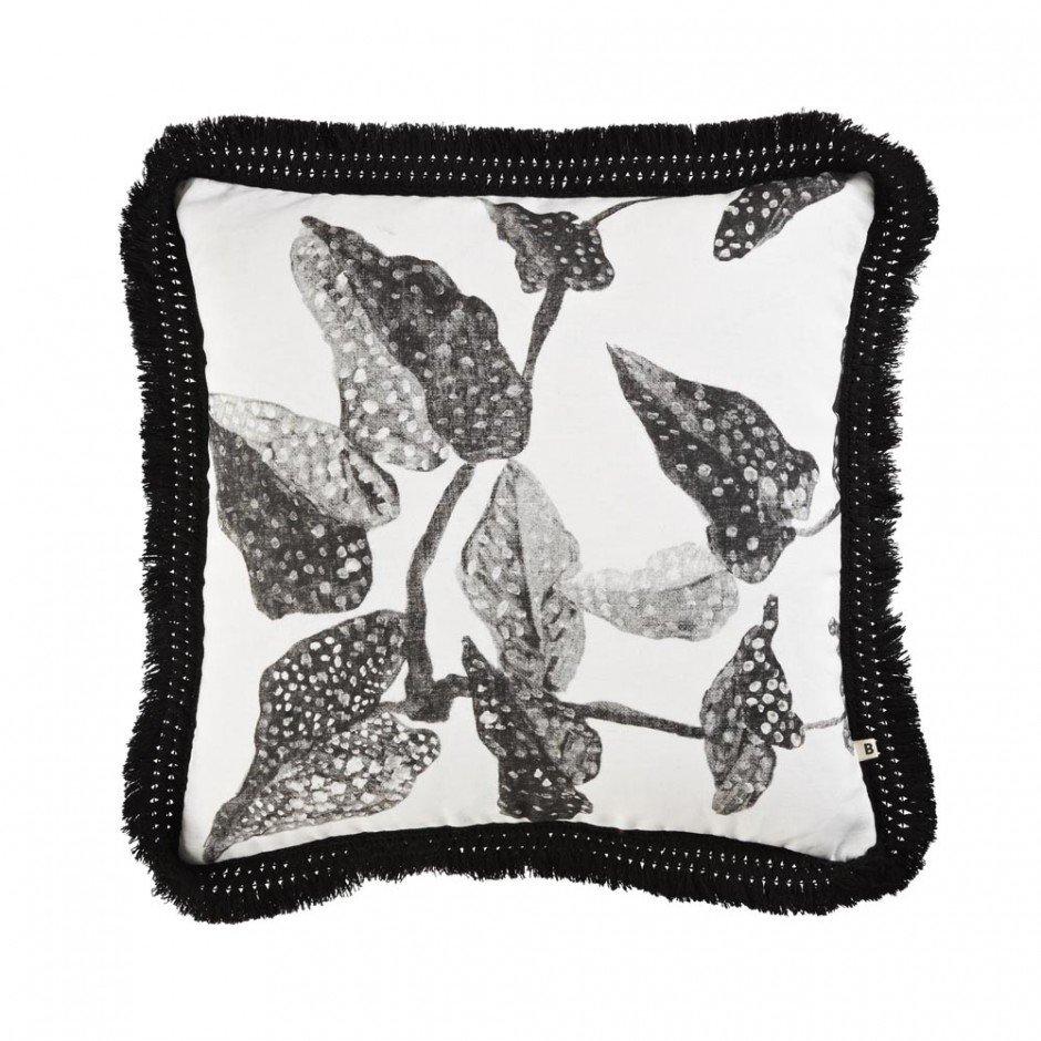C1019-Spotted-Begonia-Black-50cm-1000x1000-940x940
